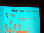 Lecture on Bee Forensics