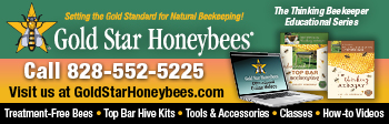 Gold Star Honeybees