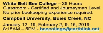 White Belt Bee College