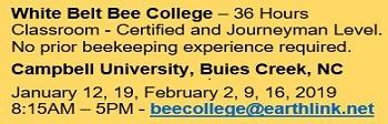 White Belt Bee College