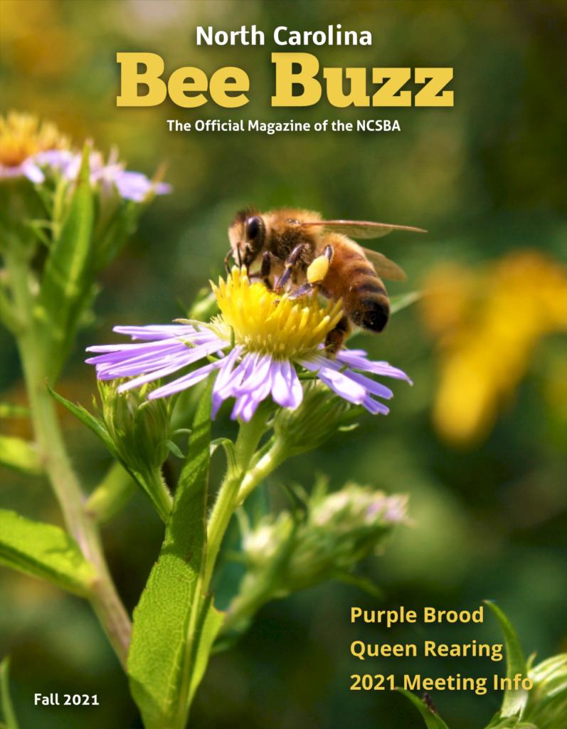 Bee Buzz Cover